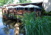 Restauracja rybna praha